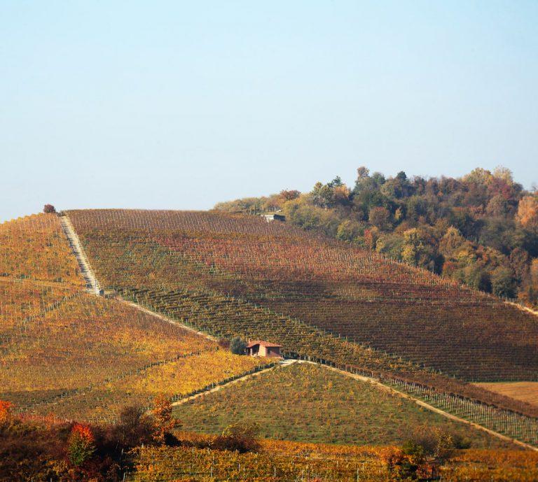 Luoghi del vino piemontese