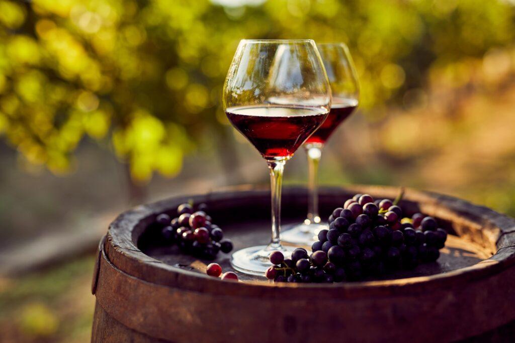 vino rosso Monferrato
